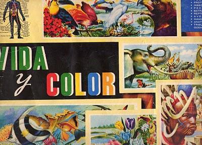 20110227191505-vida-i-color50.jpg