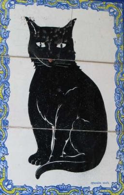 20131222210723-gato-negro-1.jpg