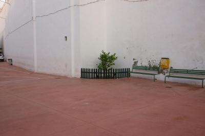 20101223225438-naranjito.jpg