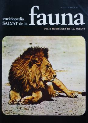 20121104104123-leones.jpg