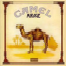 20200713201855-camel.jpg